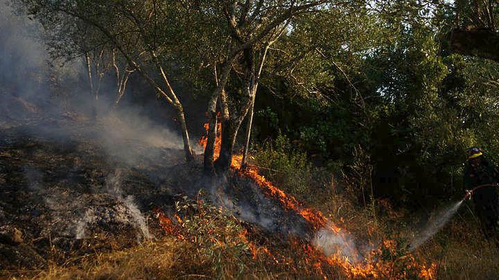 Υπό μερικό έλεγχο η φωτιά στο όρος Παντοκράτορας, στην Κέρκυρα